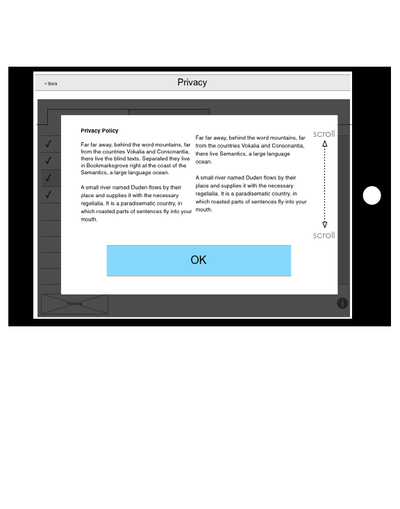 privacy policy on tablet.png