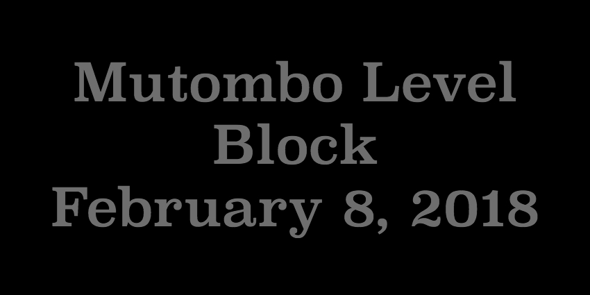 Feb 8 2018 - Mutombo Level Block.jpg