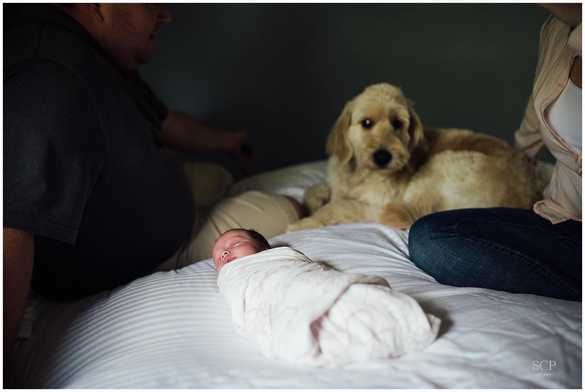 newborn lifestyle omaha bachmann-4781.jpg