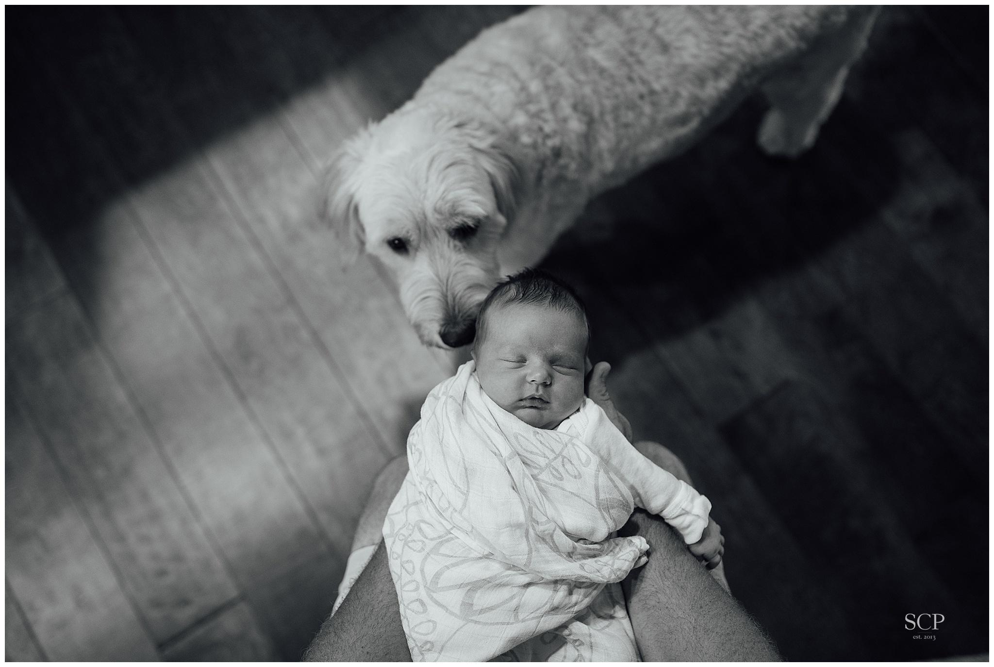 newborn lifestyle omaha bachmann-4927.jpg