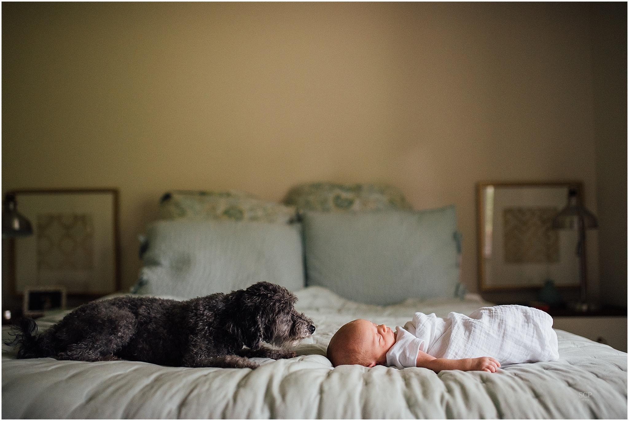 newborn lifestyle omaha ellison edick-4650.jpg