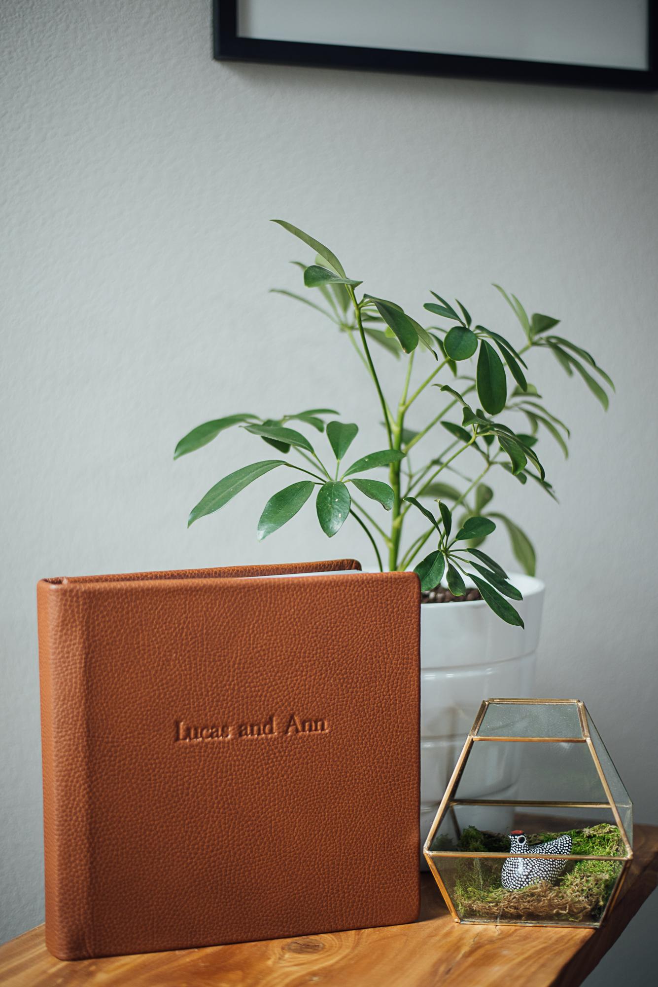 redtree album-9.jpg
