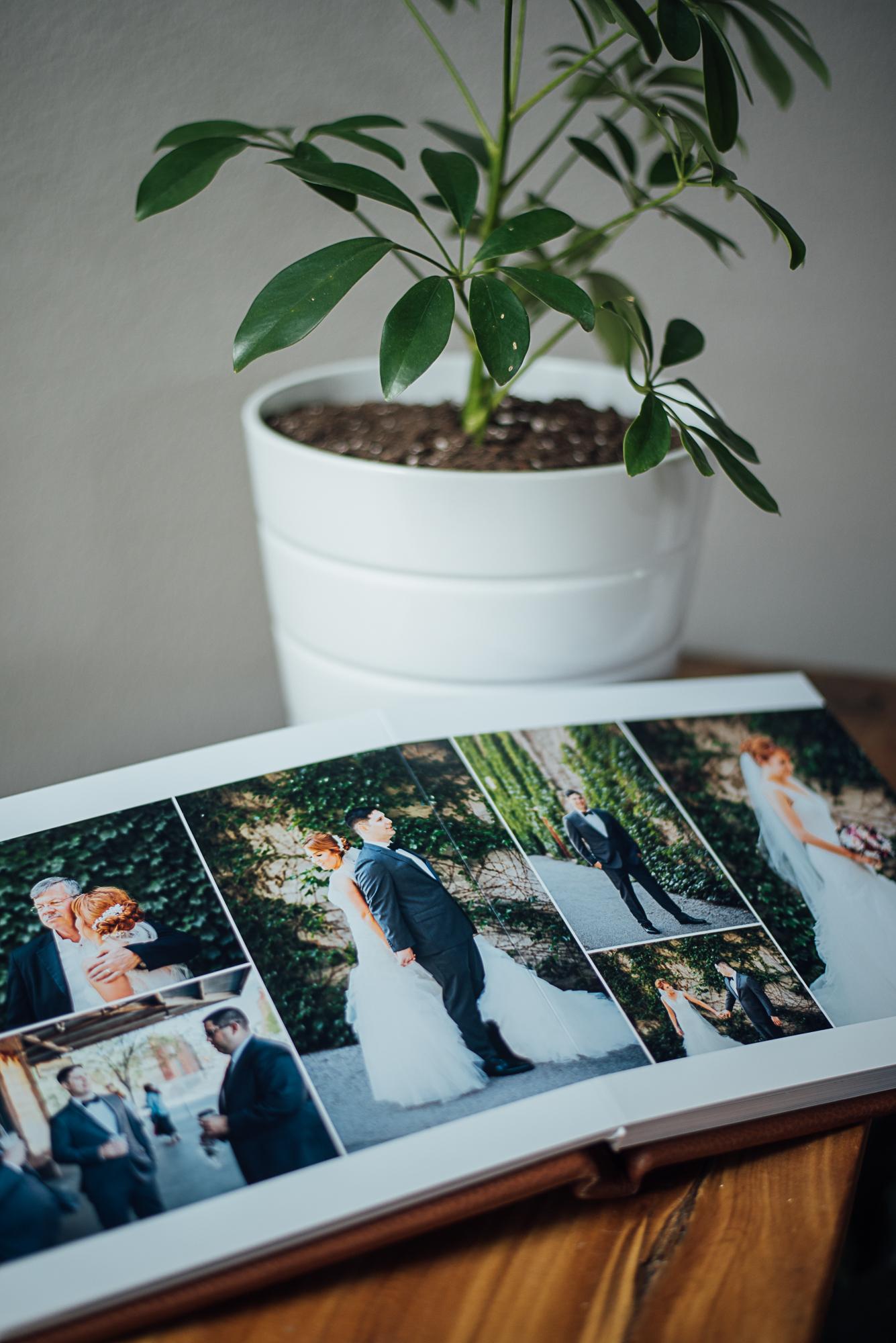 redtree album-21.jpg