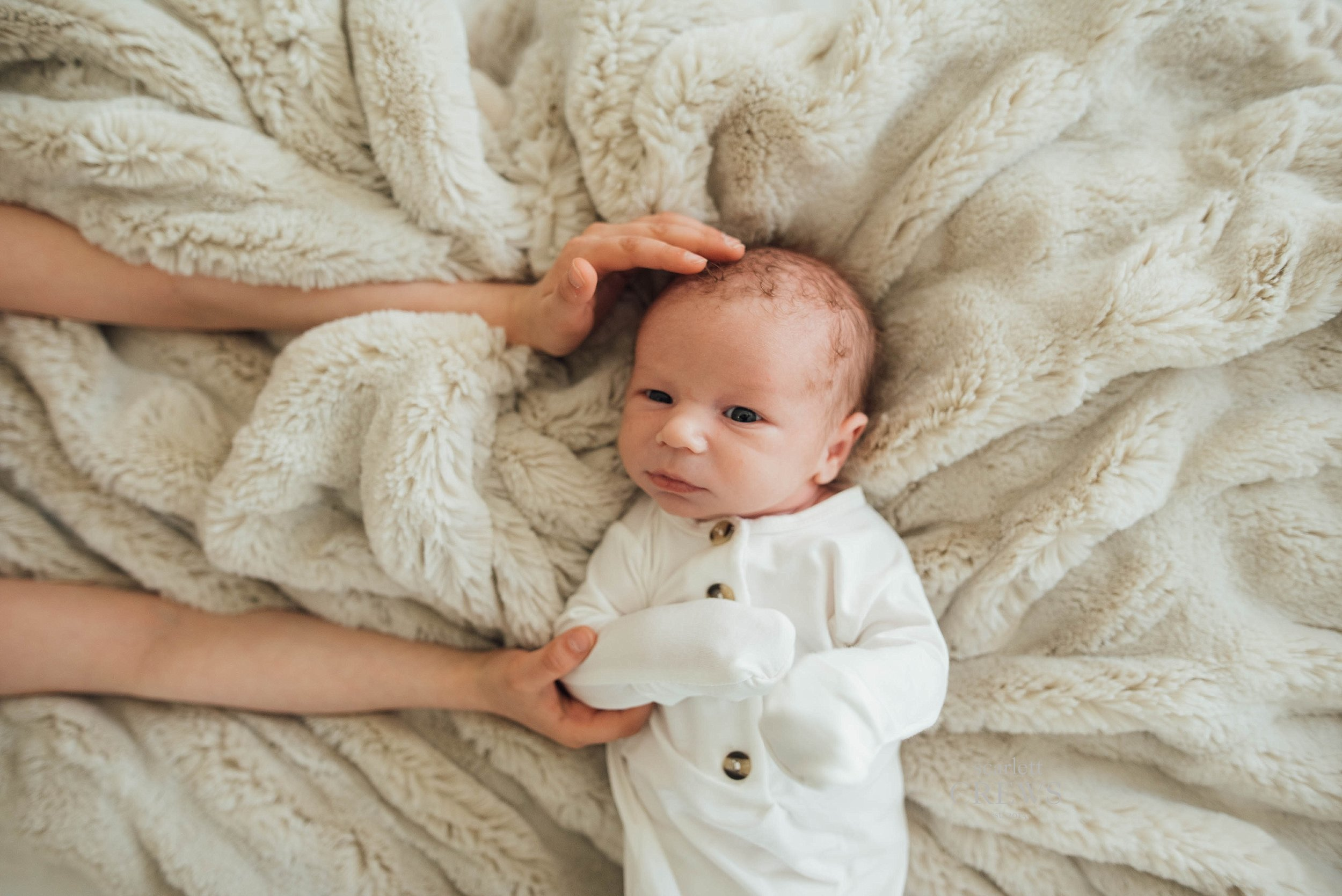 St Louis Newborn Photography Lifestyle Graham15.jpg