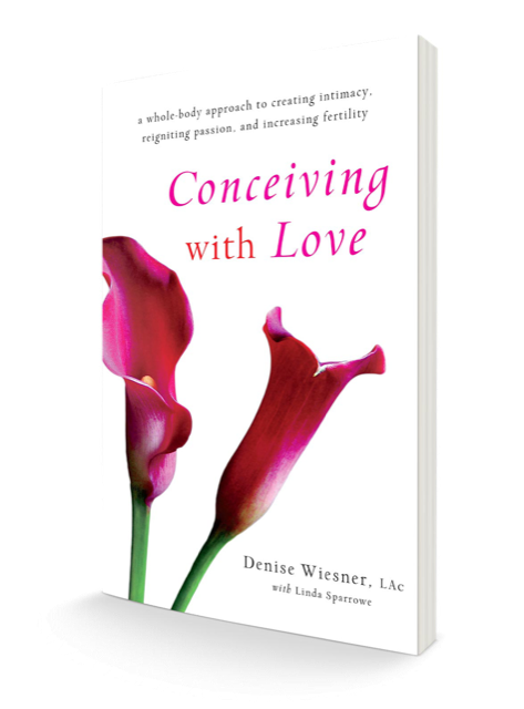 3D Book Cover_Conceiving with Love transparent (1).png