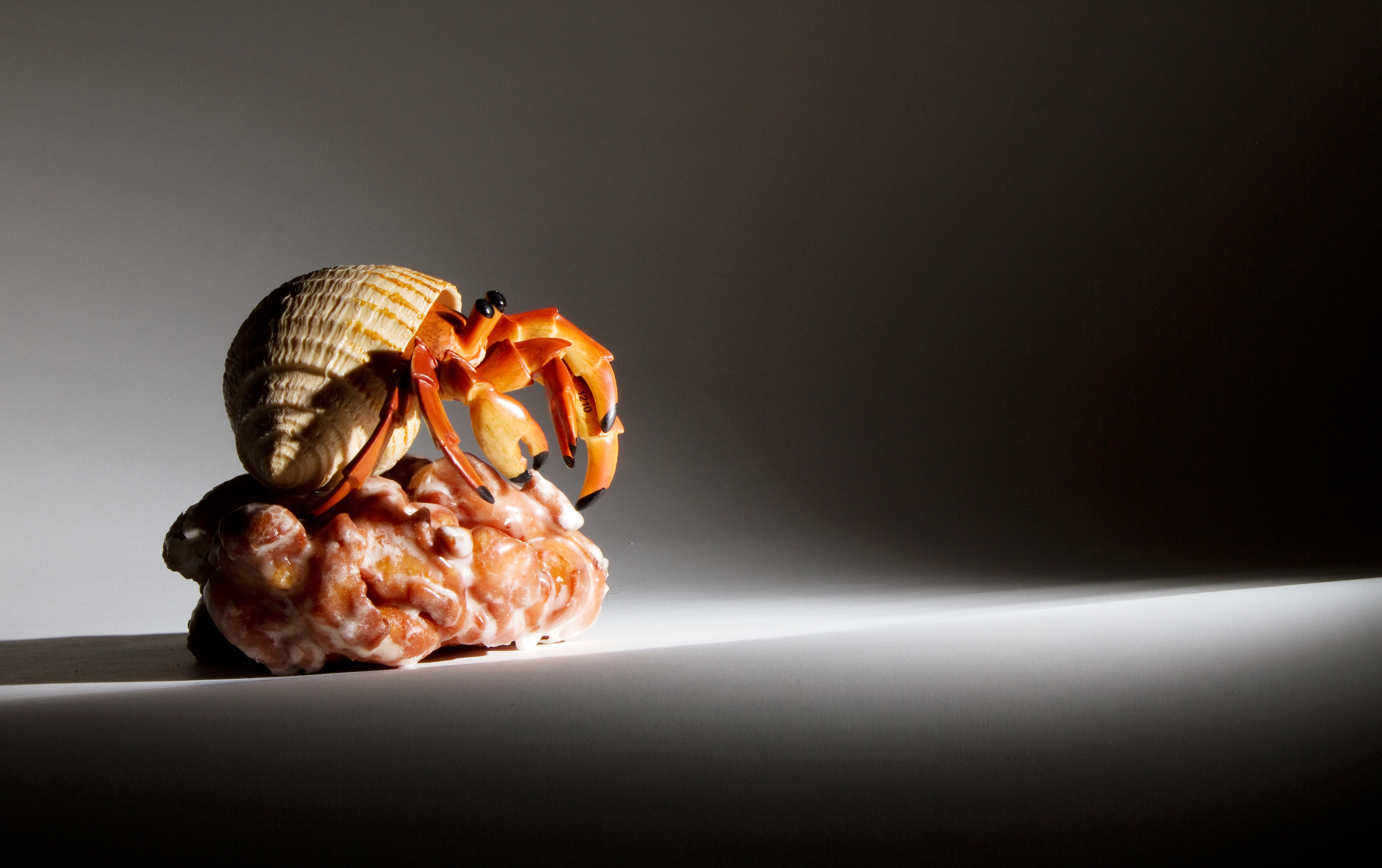 """Hermit crab crawling over an apple fritter.""""Crab Crawls into Contrast."""" Photo by Jeffrey Luke."""