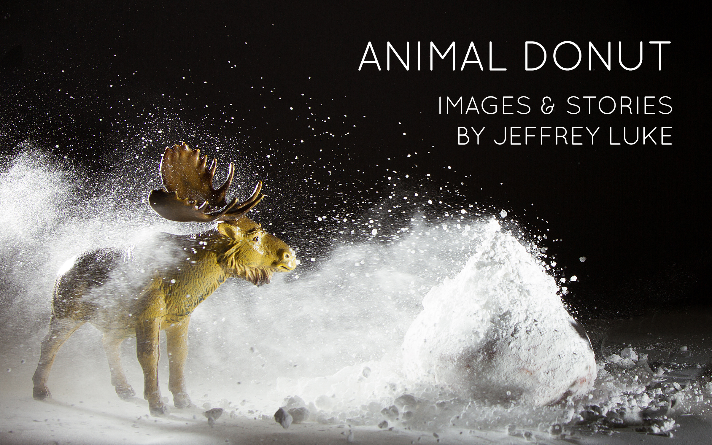 Animal Donut Mini Book - Available for Purchase