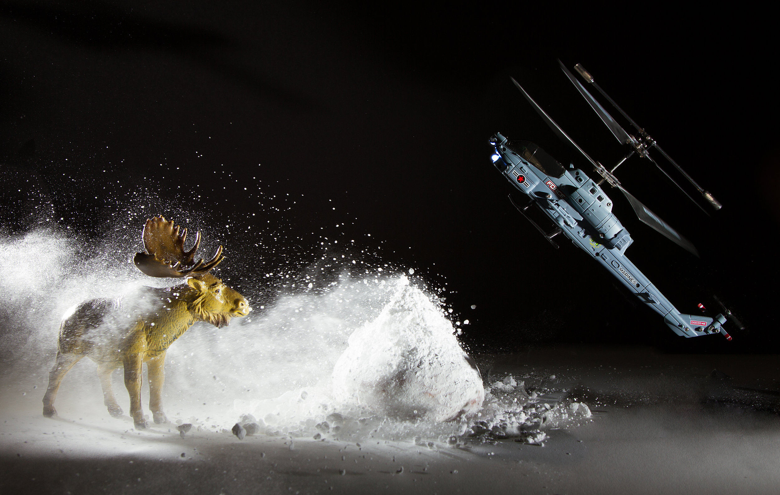 Moose and Helicopter in Snowstorm
