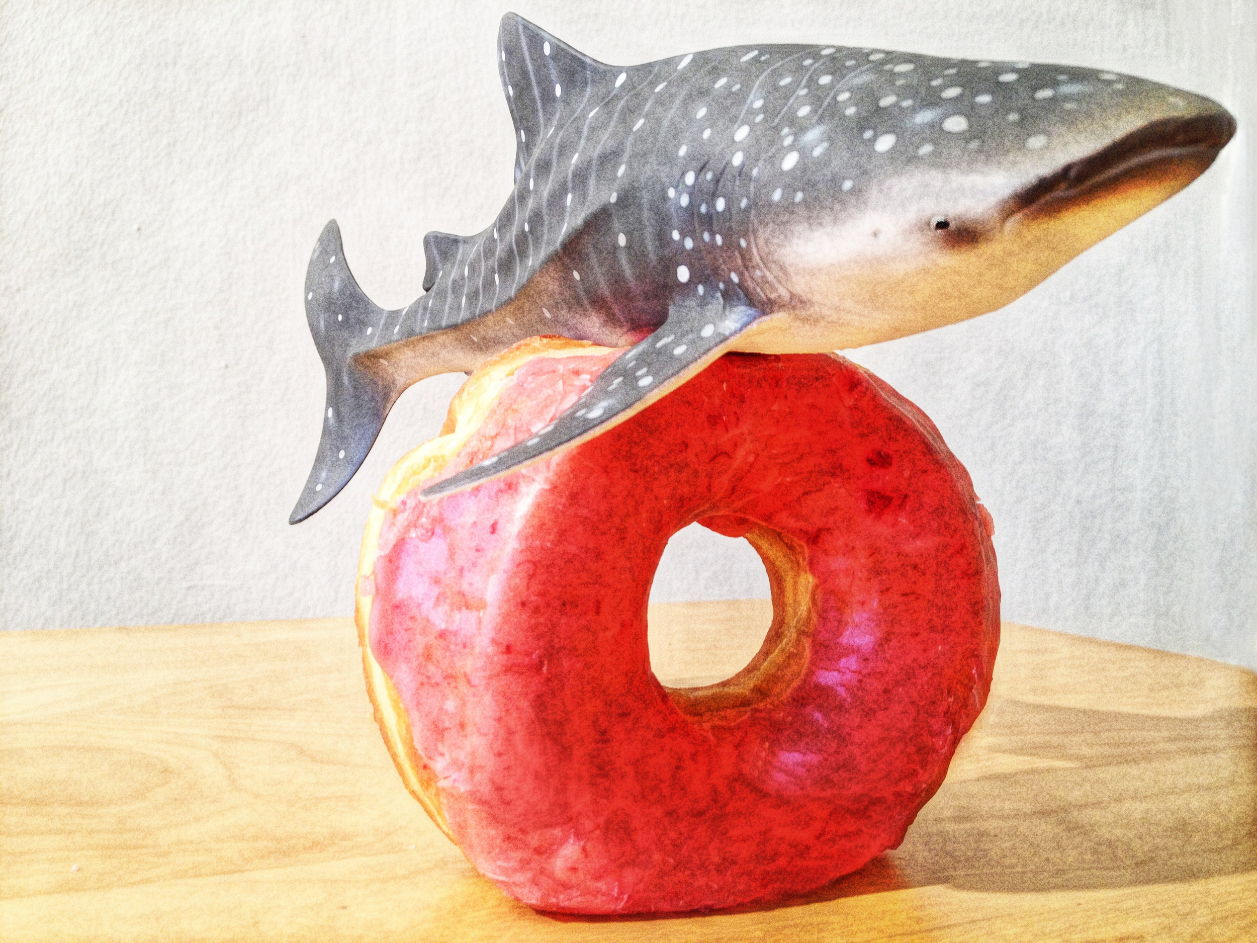 Whale Shark Jumps Raspberry Ring