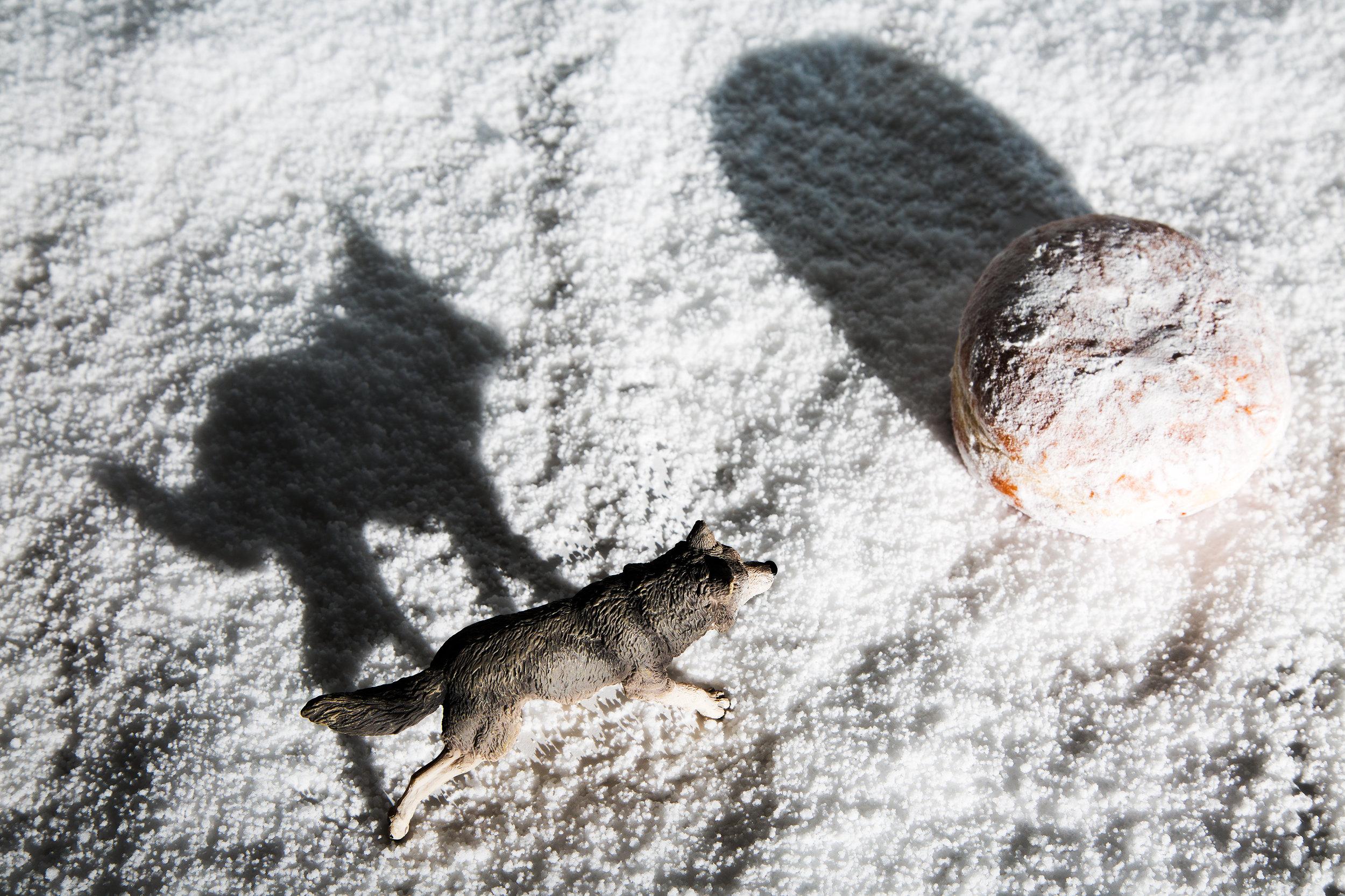 Wolf Across Snowscape