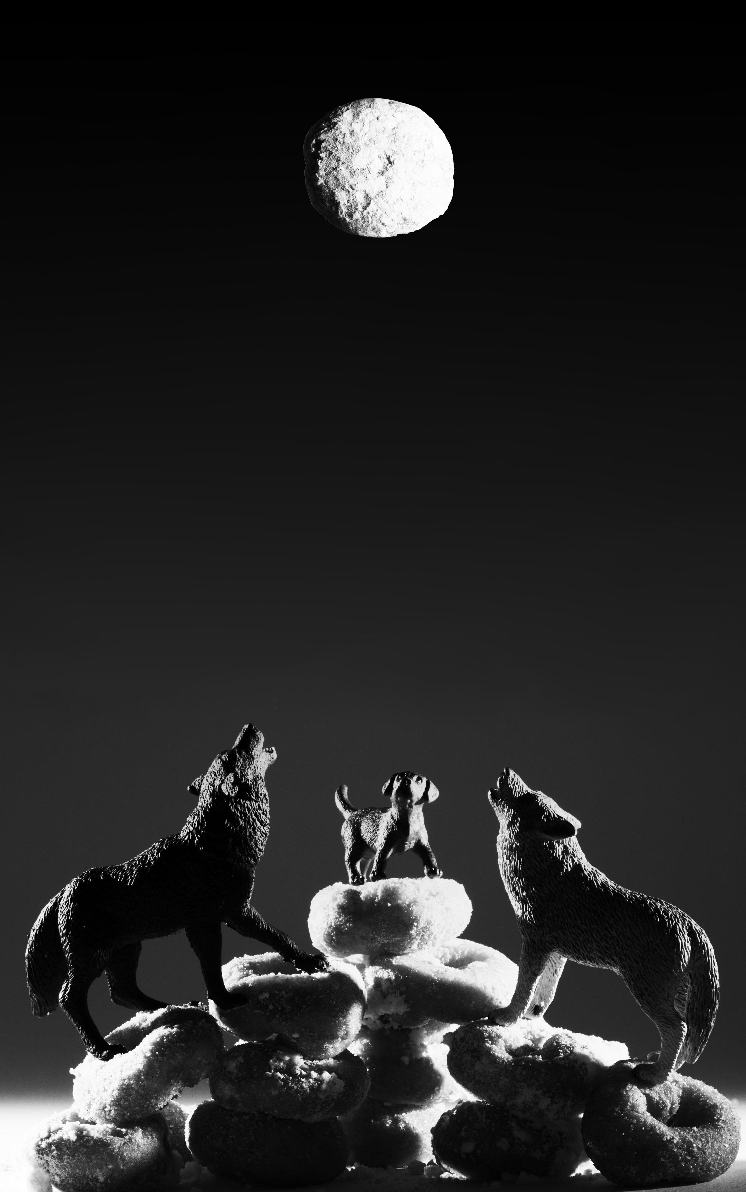 Wolves, Puppy, Full Moon Donut