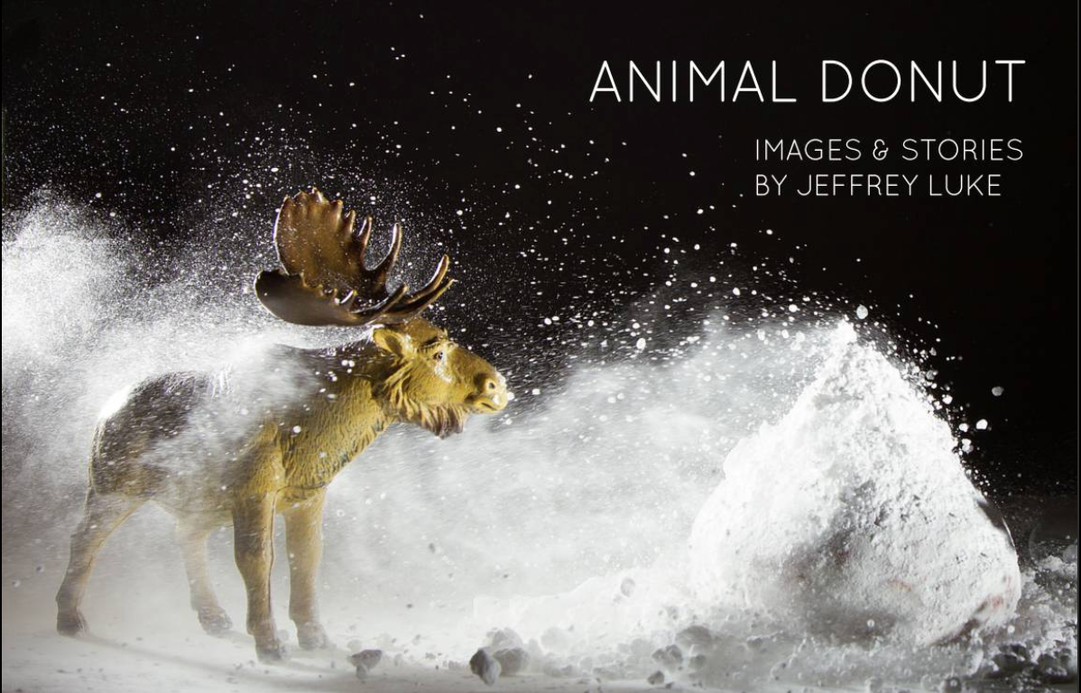 You can get your own copy of the Animal Donut mini book. Stunning photos and makes a fantastic gift.