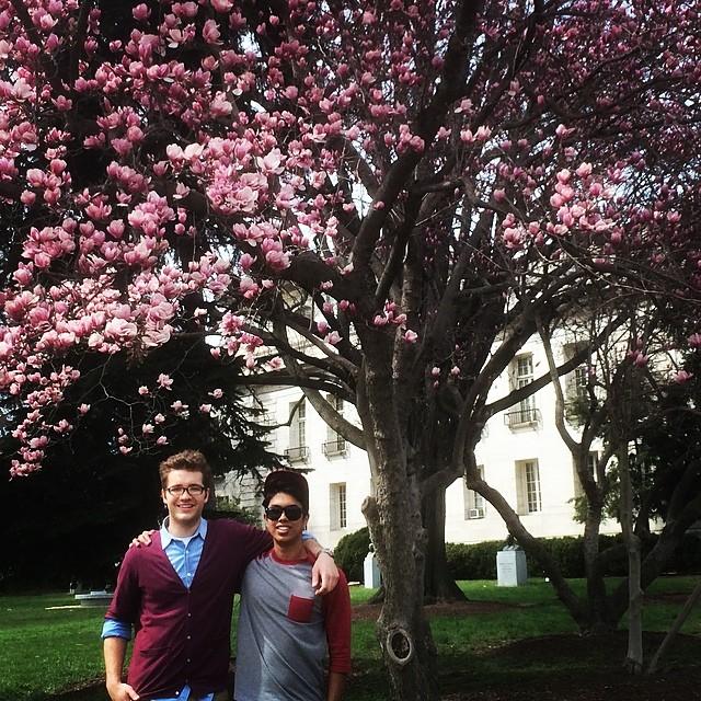 The 2014 Washington DC Cherry Blossom Festival #cherryblossoms