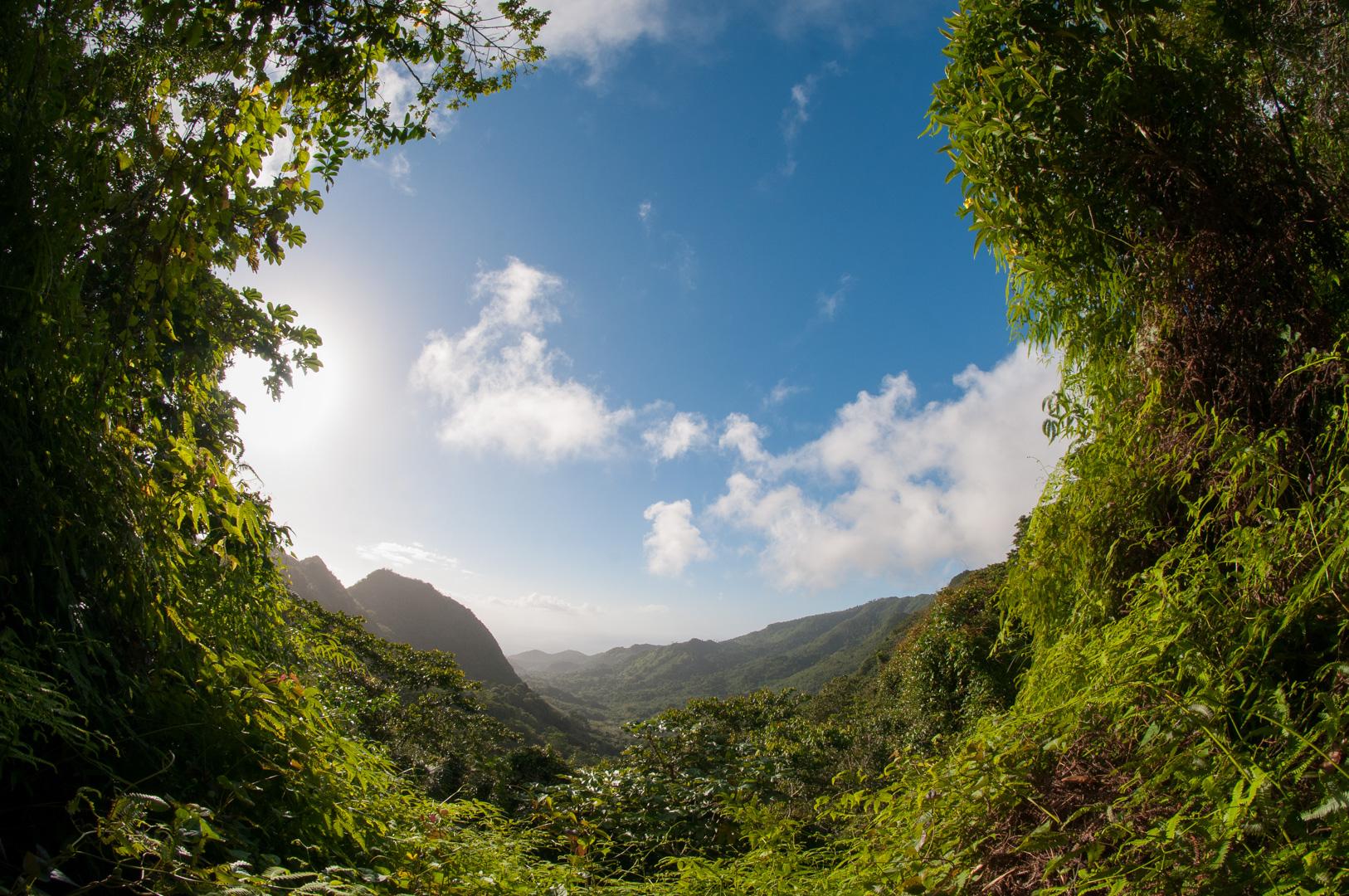 RoadsideLookout_Grenada_WebEdits-1.jpg