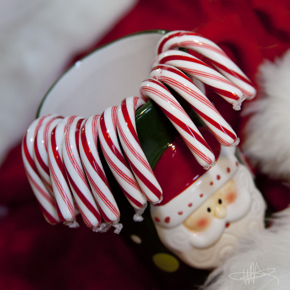 Fact: You cannot overdose on candy canes. It's science!