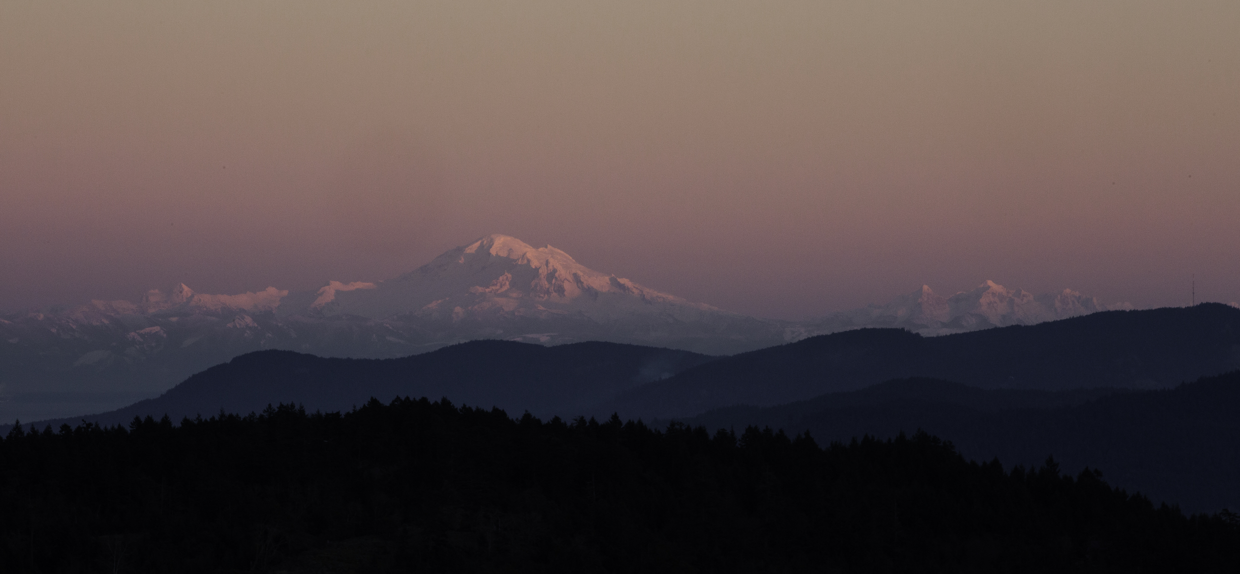 Mt. Baker from a lookout carved into a scree slope and some Scotch Broom up Jasper Way. The last sunset of 2015.