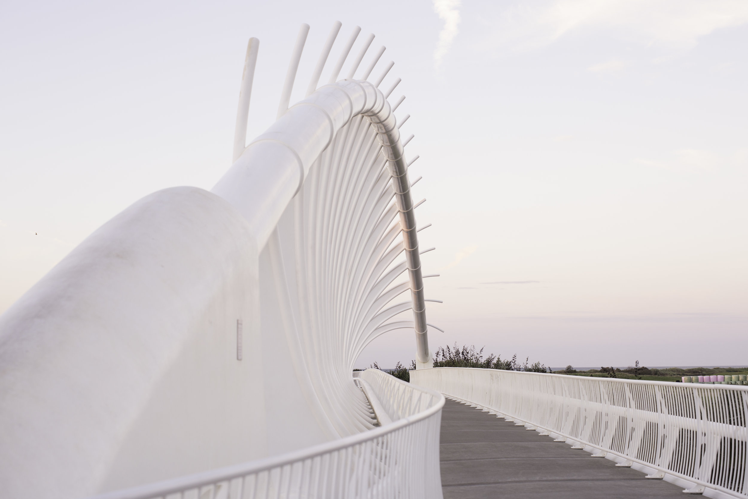 Looking back the other way, this white whale rib foot bridge perfectly frames Mt. Taranaki.