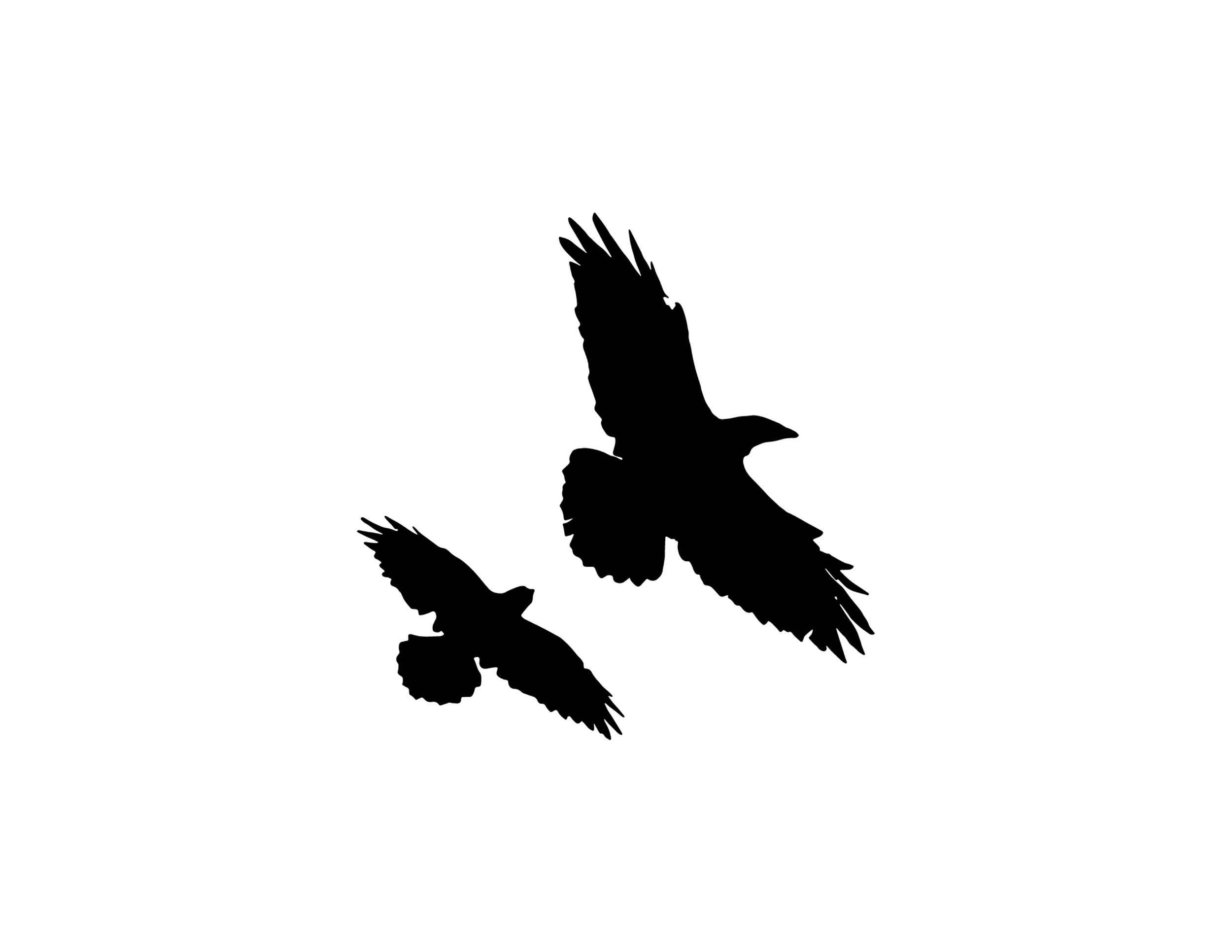 Logo: Personal [sketch + illustrator]