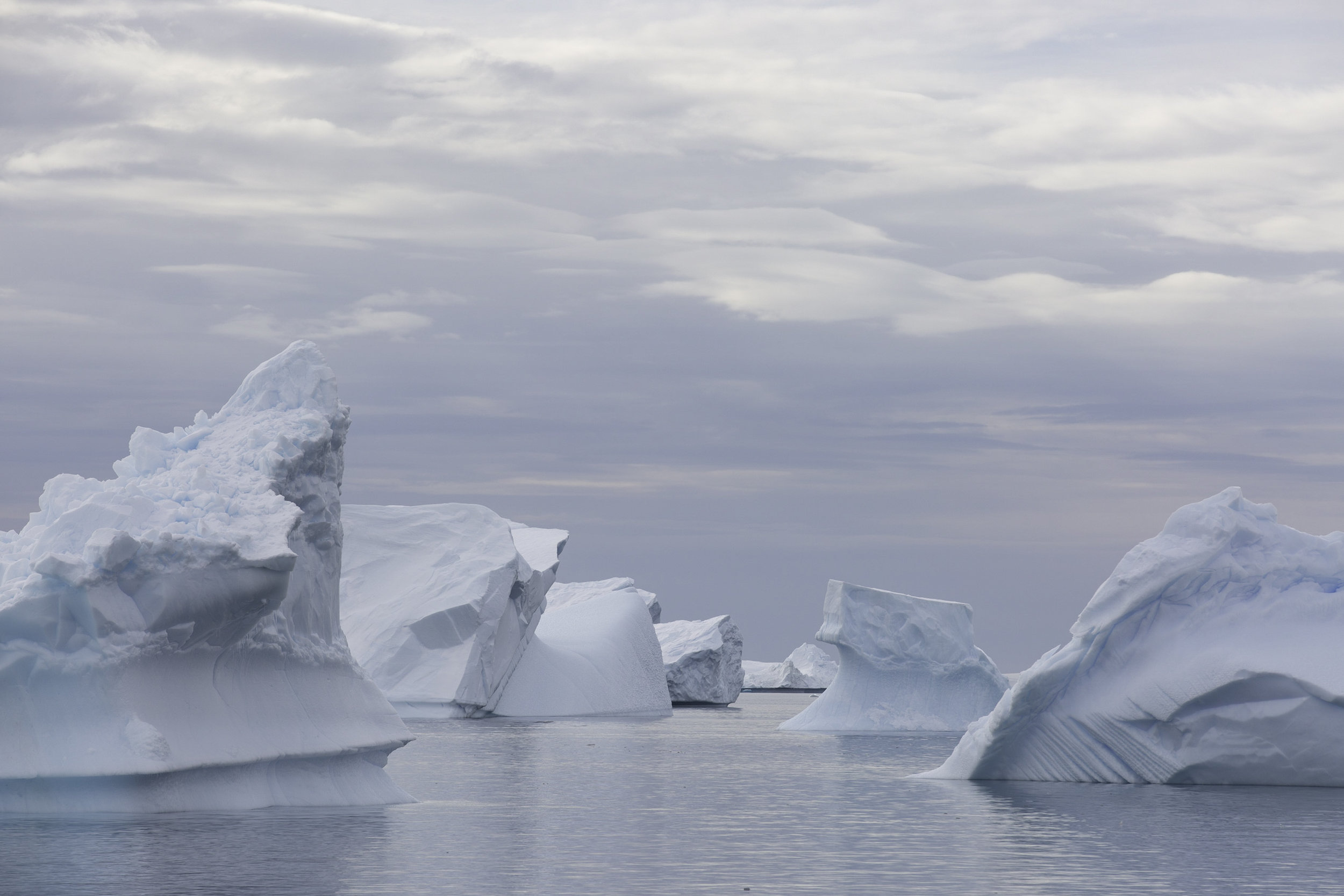 Another iceberg graveyard, all of these are now grounded.