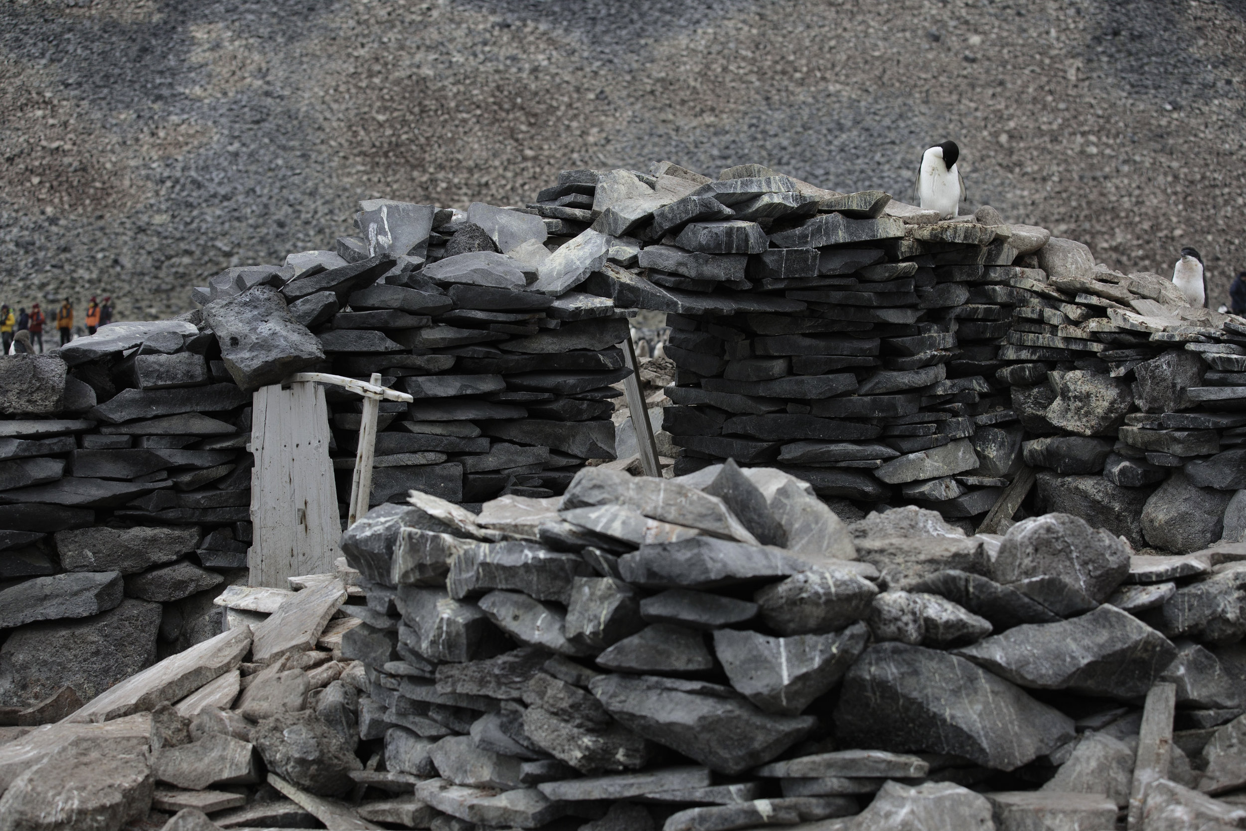 The remains of Larsen's hut on Paulet Island where the men overwintered, unintentionally, on a diet of penguin.