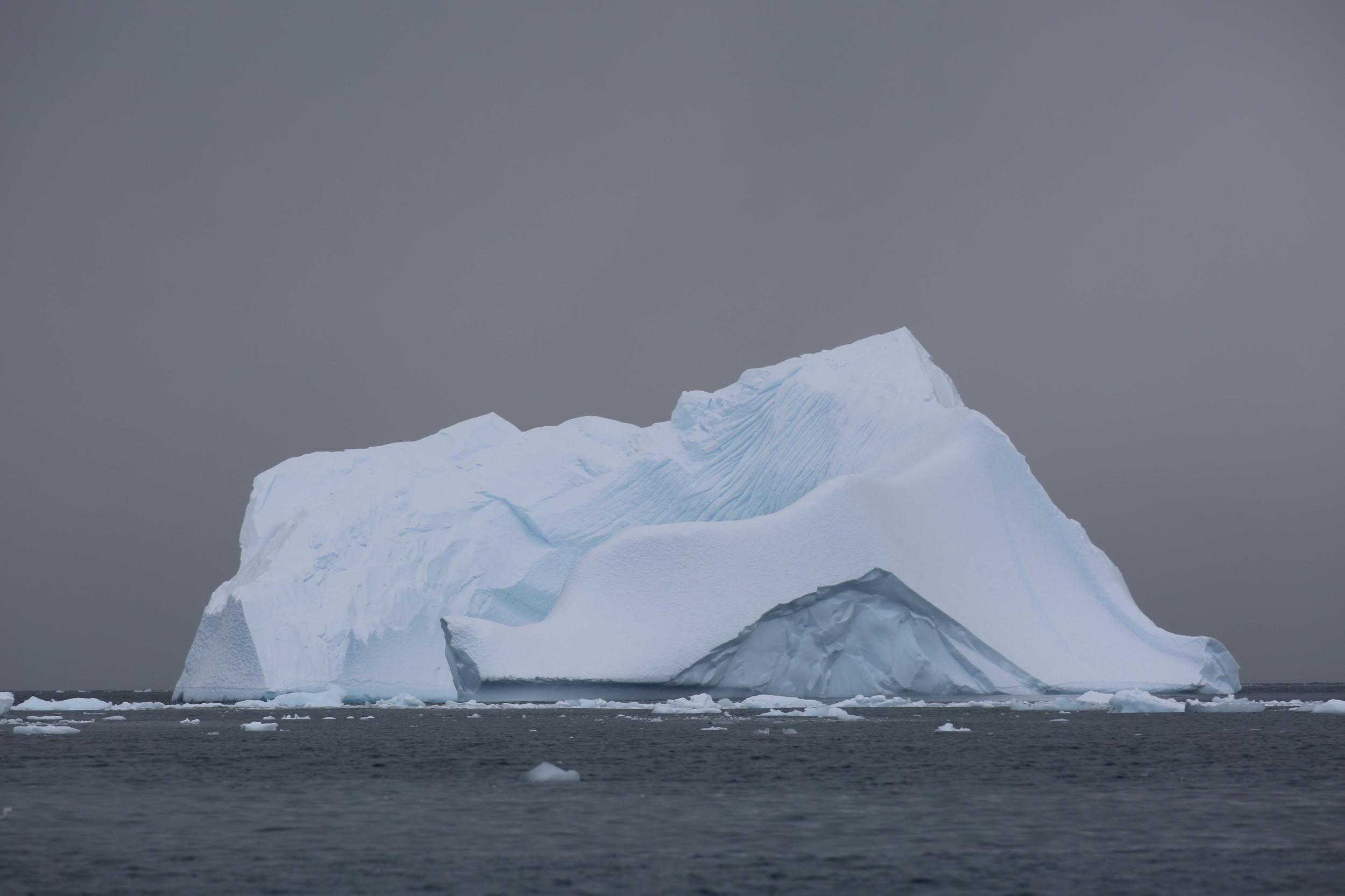 Ciervo Cove, Antarctica