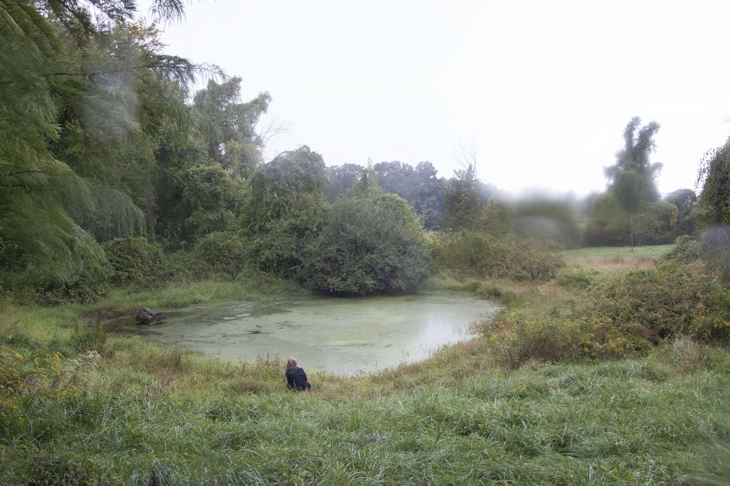 Green Pond Print 1.jpg