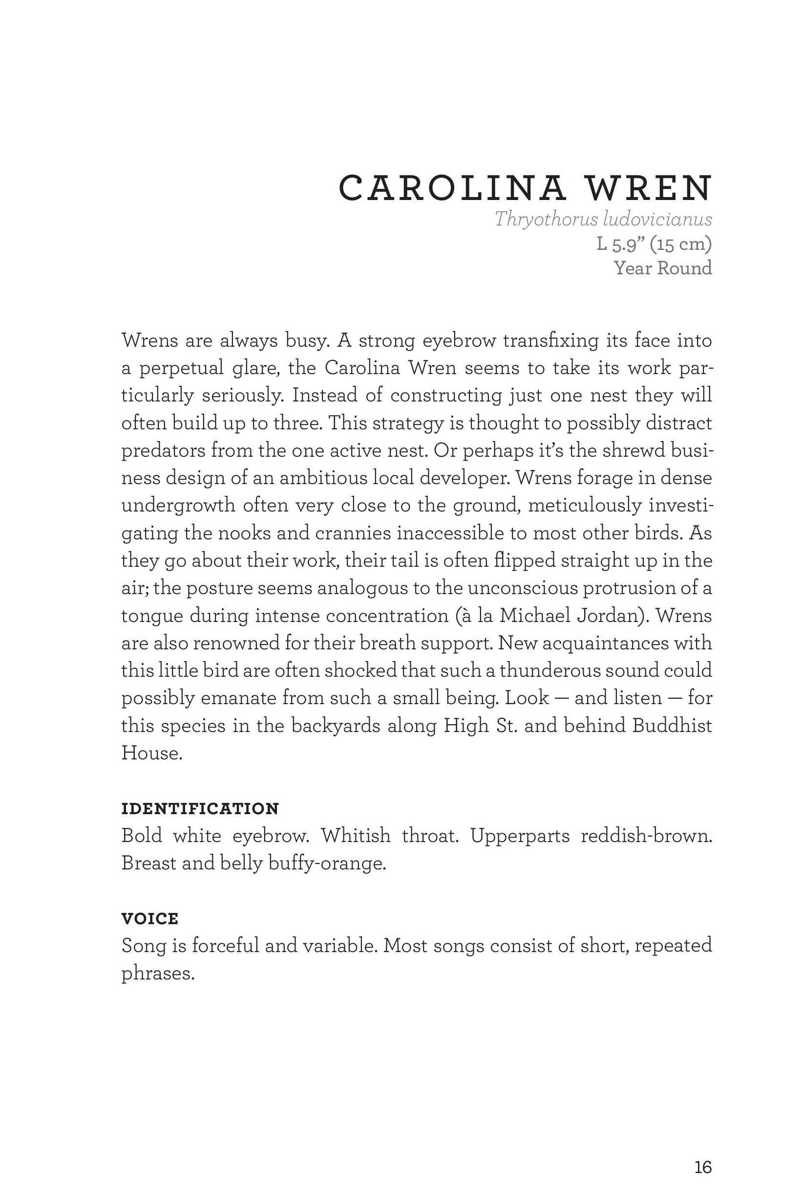 James_FieldGuide_Text screen lores (3)-page-019.jpg
