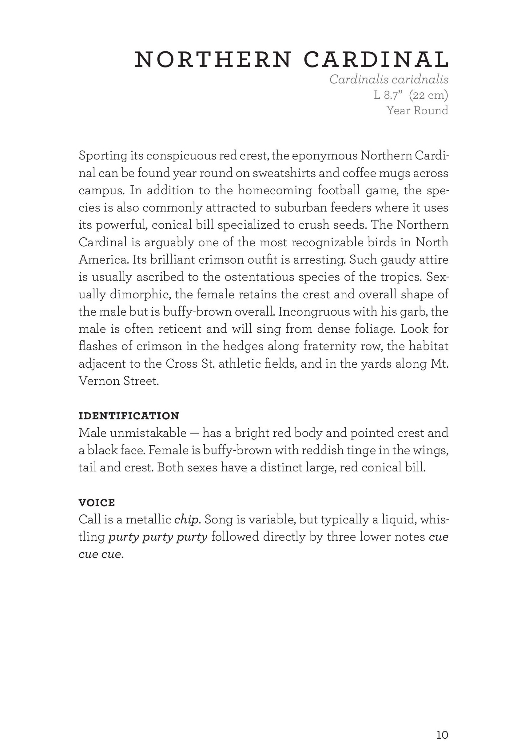 James_FieldGuide_Text screen lores (3)-page-013.jpg