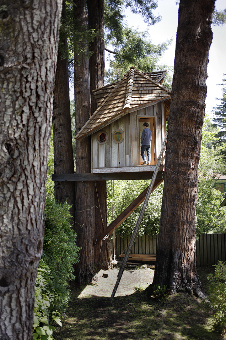 Treehouse / Jay Nelson / Mill Valley , CA