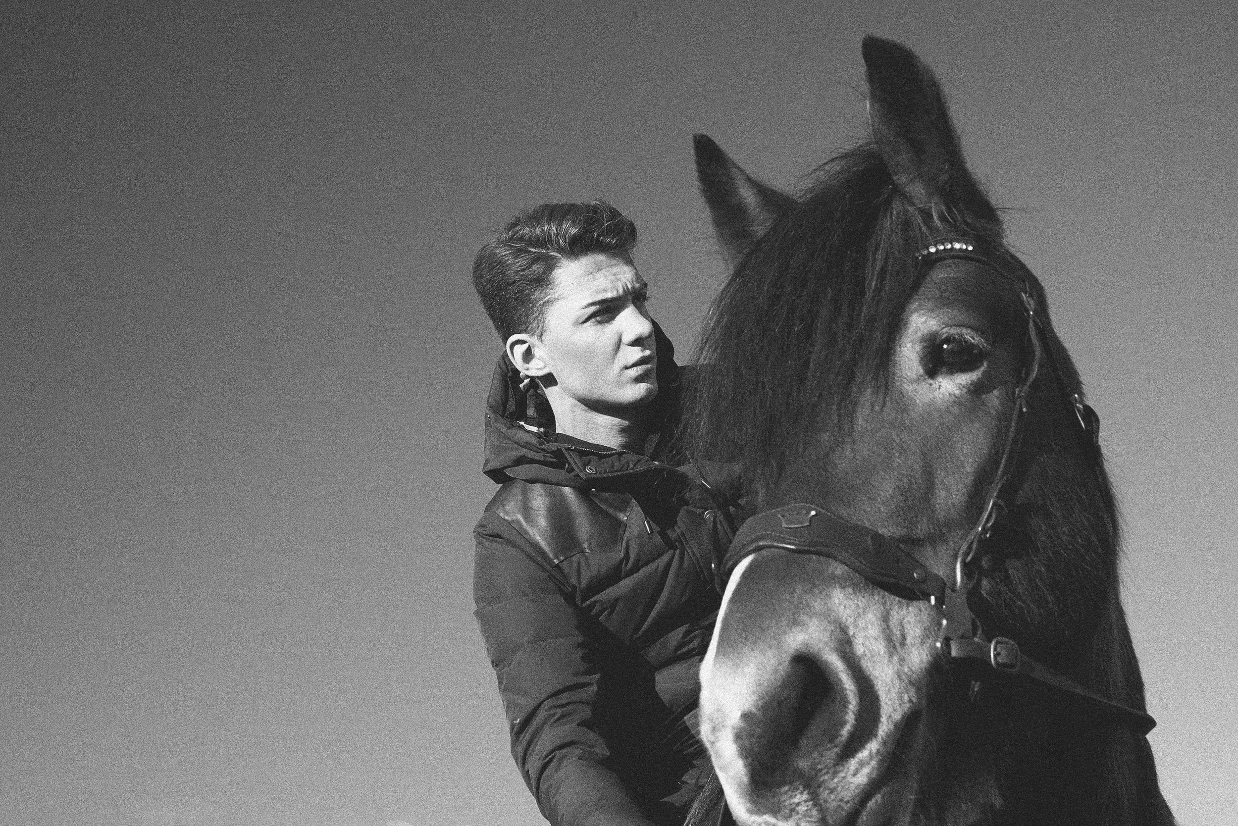Adthe Horse 2.jpg