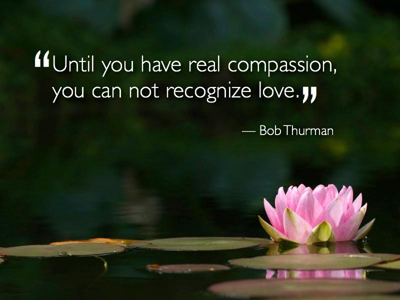 compassion.2.jpg