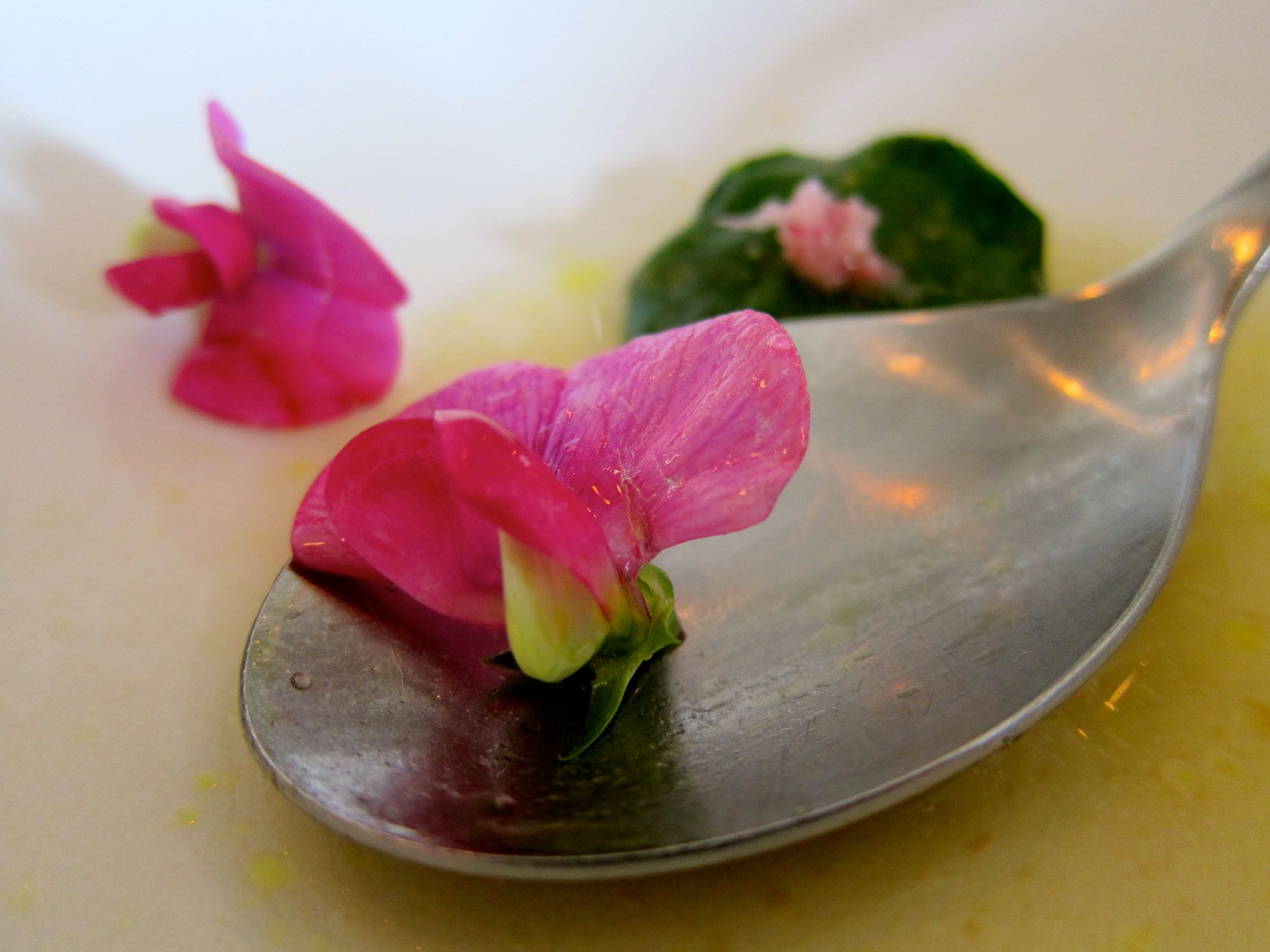 Sweet pea flowers in foreground, baby nasturtium leaves in background wrapping shrimp (wish I got a better photo of the nasturtium!), rhubarb broth.
