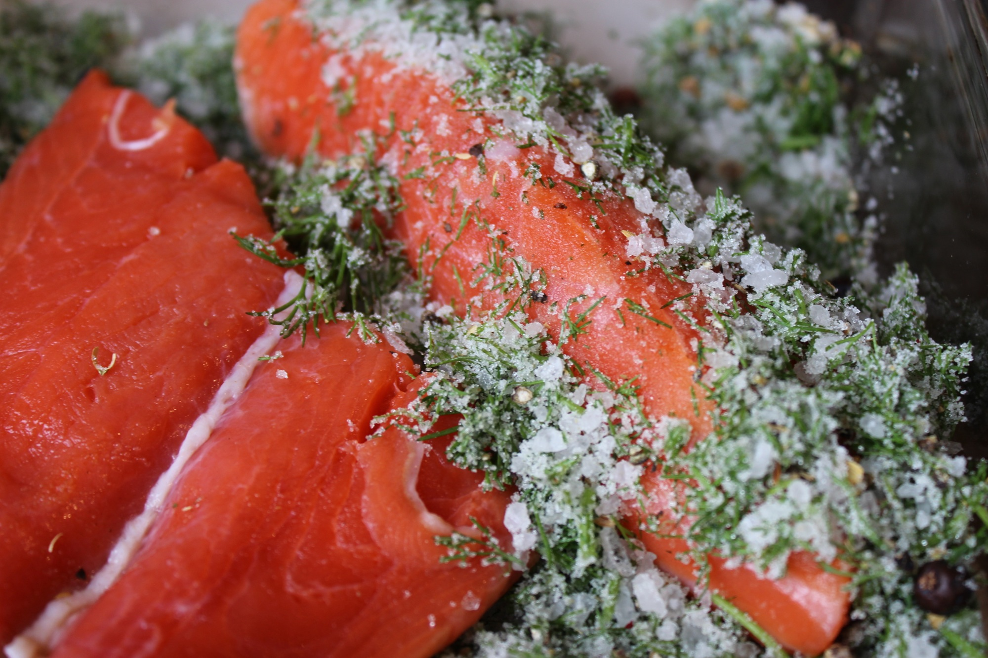 Rubbing salmon with salt/sugar/herb/pepper blend.