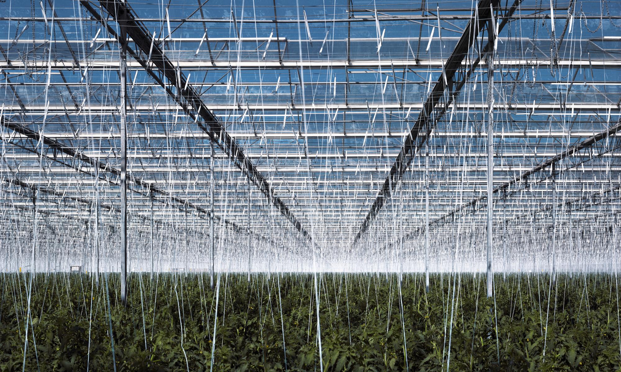 texas-greenhouse-side.jpg