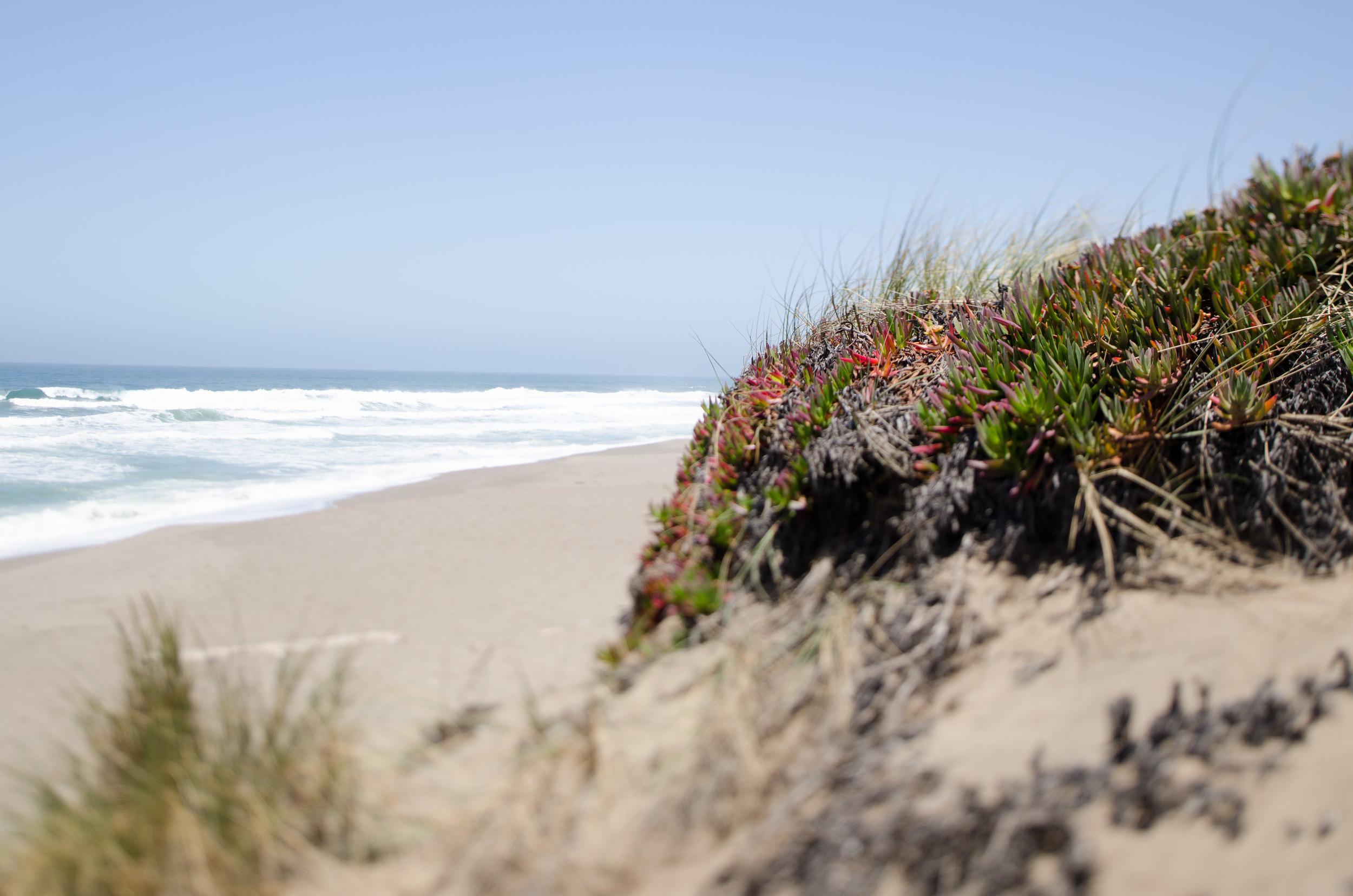 Cali_2014-41.jpg