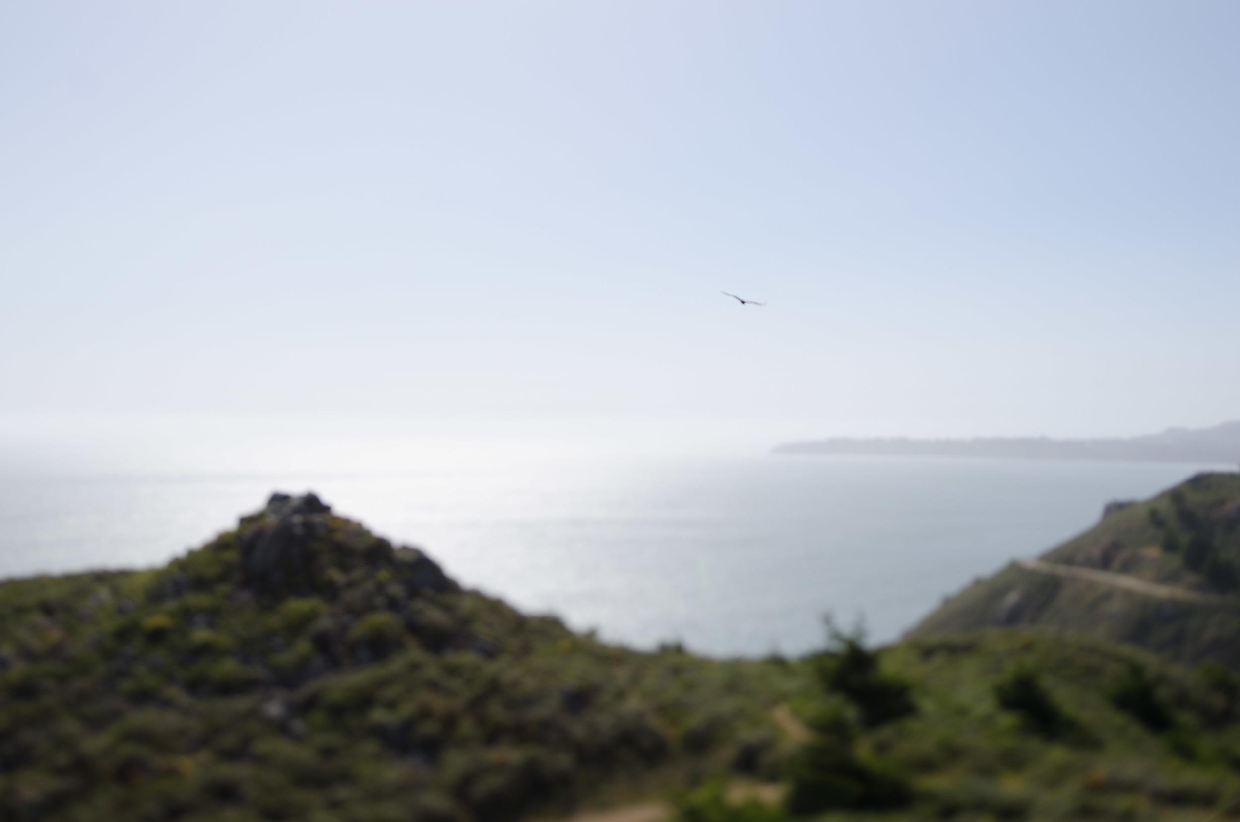 Cali_2014-57.jpg