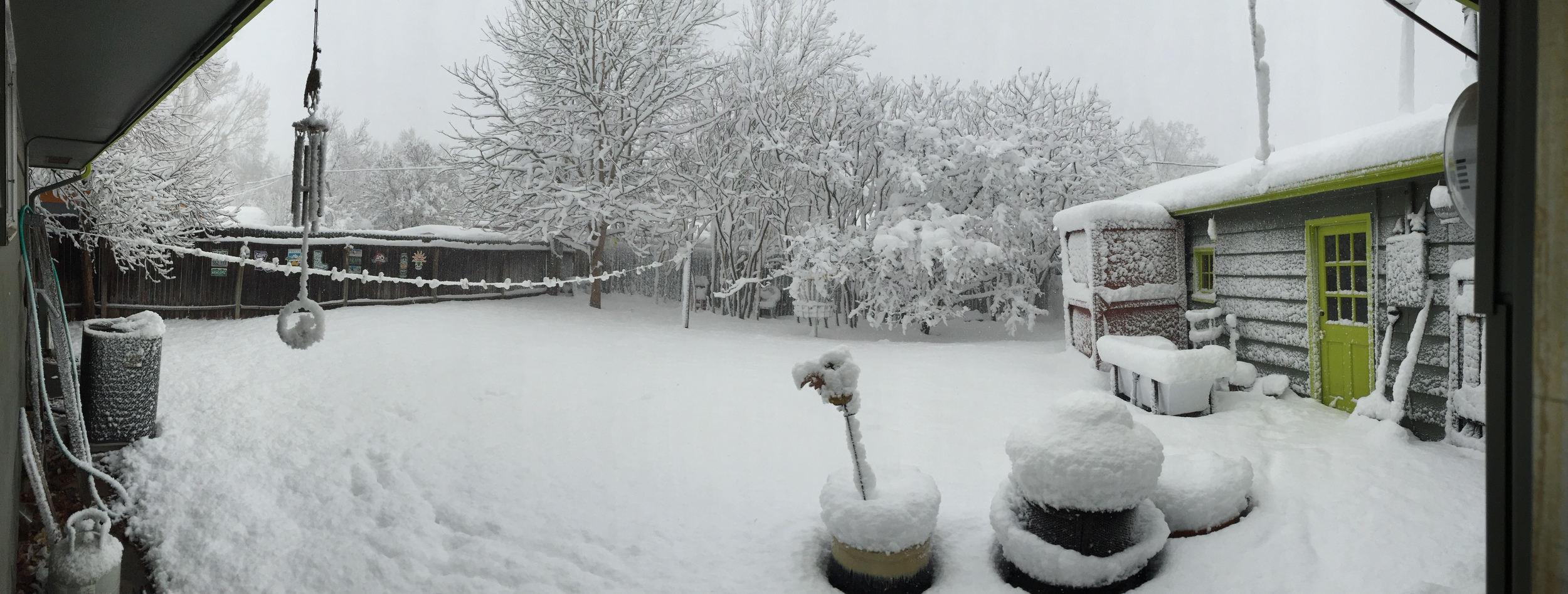 a panoramic portrait of the spring 2016 blizzard in Fort Collins, Colorado