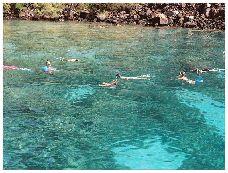 Snorkeling at the Captain James  Cook Monument at Kealakekua Bay on the Big Island of Hawaii. Film Travel photography by Sonja Salzburg of Sonja K Photography.