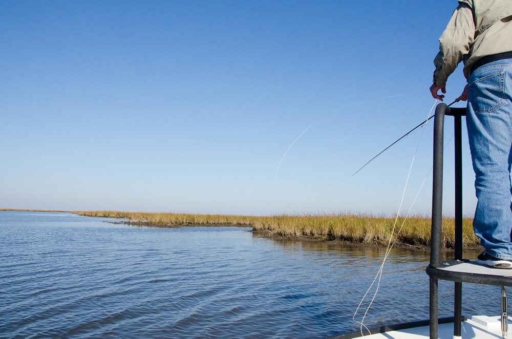 My dad makes a cast at a redfish in the Louisiana marsh. Fly fishing travel photography by Max Salzburg of Sonja K Photography.