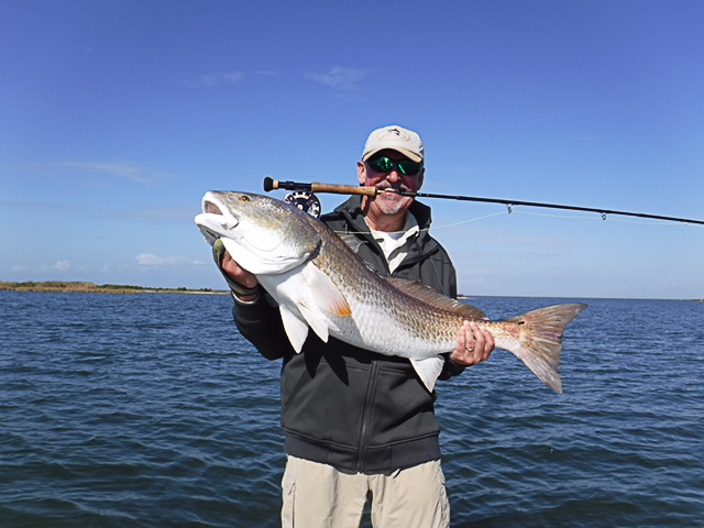 A thirty pound redfish caught on fly in the Louisiana marsh near Port Sulphur.