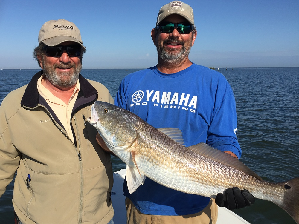 A large redfish caught on fly with captain Eddie the Redfish Master in the Louisiana marshes near Port Sulphur.