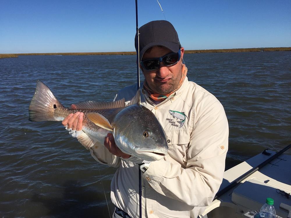 A healthy redfish caught on fly in the Louisiana marsh near Port Sulphur.