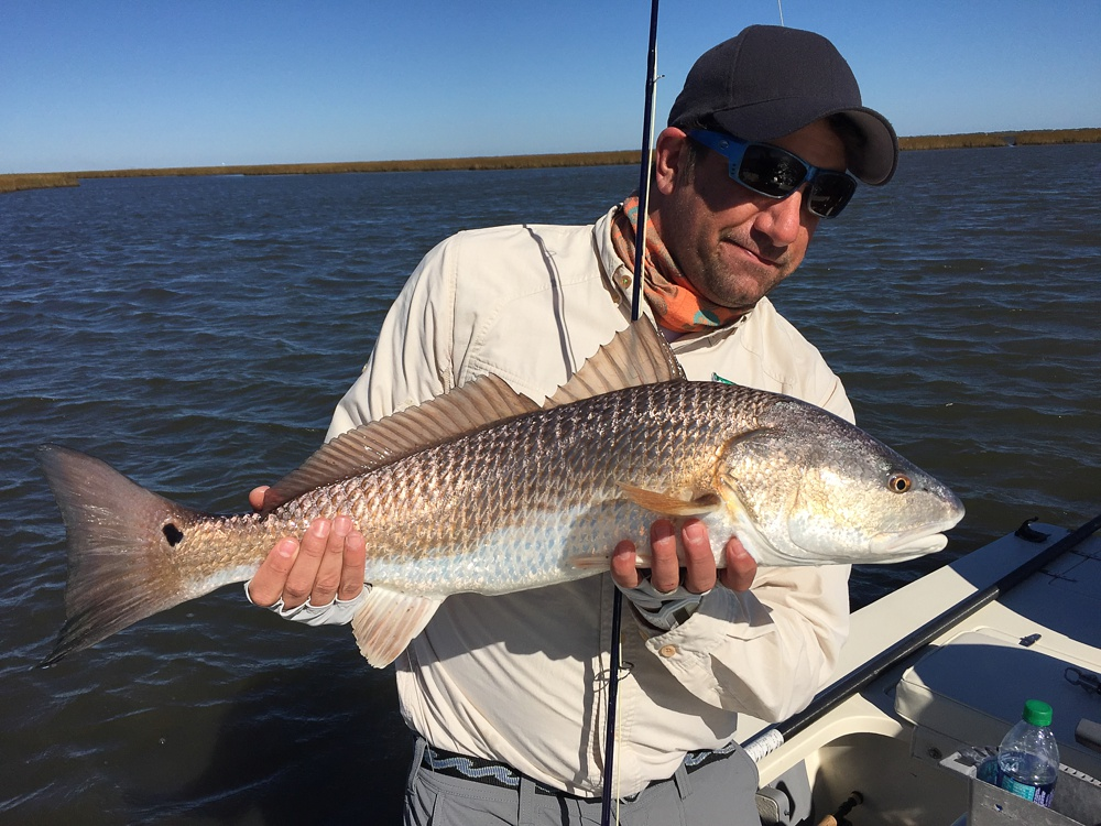 A nice redfish caught on fly in the Louisiana marshes near Port Sulphur.
