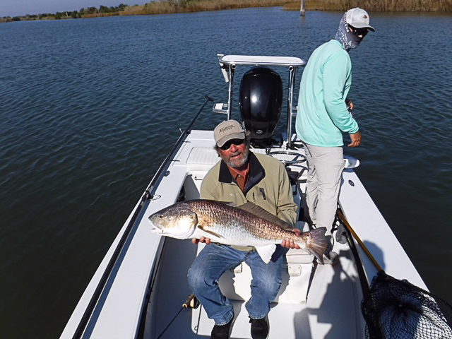 A large redfish caught on fly in the Louisiana marsh near Port Sulphur.
