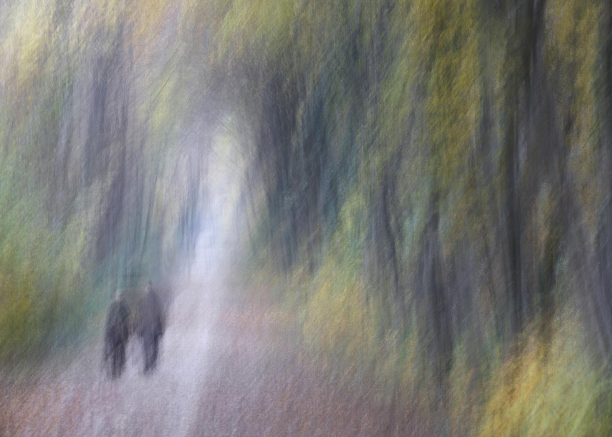 Landscapes02.jpg