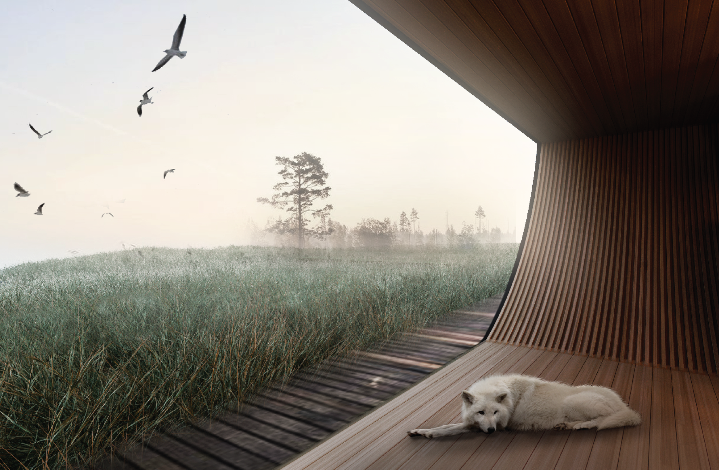DOARCHITECTS_Rolling homes-08.png