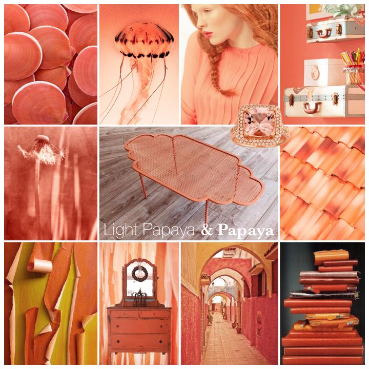 ColorStory_LightPapaya&Papaya_01.png