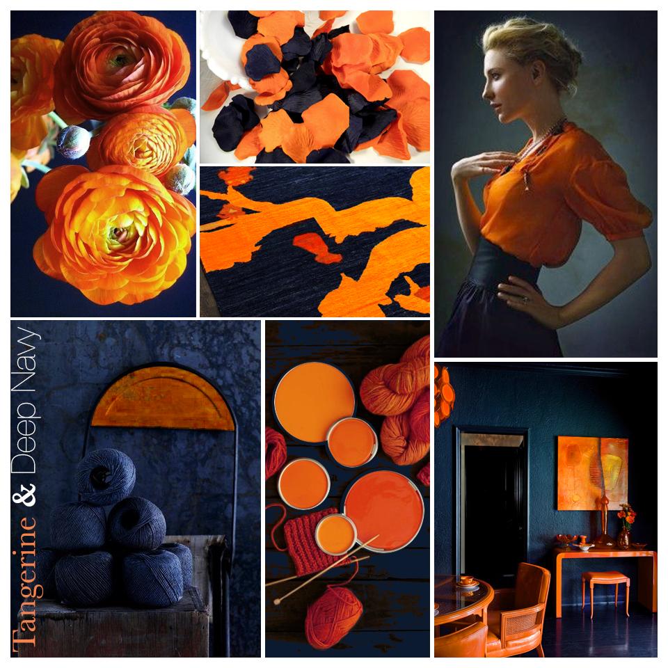 ColorStory_Tangerine&DeepNavy_2.png
