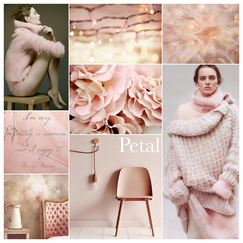 ColorStory_Petal.png