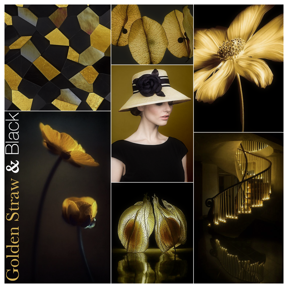 ColorStory_GoldenStraw&Black.png